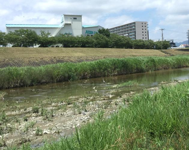 子どもの水難」は人ごとじゃない!茨木・安威川の事故から学ぶこと ...
