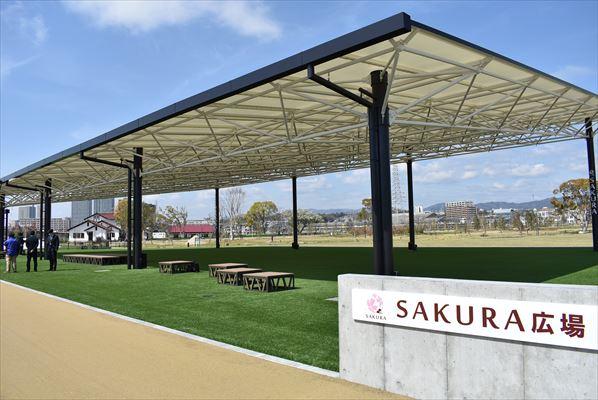 SAKURA広場
